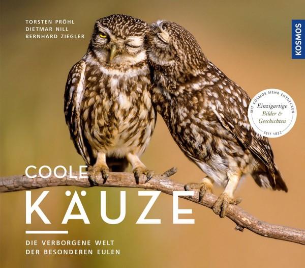 Sperlingskauz, Rauhfußkauz, Steinkauz, Habichtskauz, Waldkauz, Bartkauz, Coole Käuze