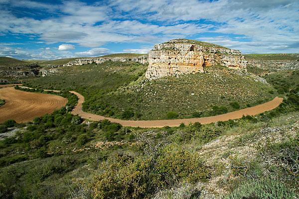 Castilla- La Mancha; Cultivated landscape; Grünlandumbruch; Guadalajara; Kulturlandschaft; Spain; extensive landwirtschaft; intensive landwirtschaft; karst; landscape; landschaft; macchia; pröhl; reisen; spanien; travels