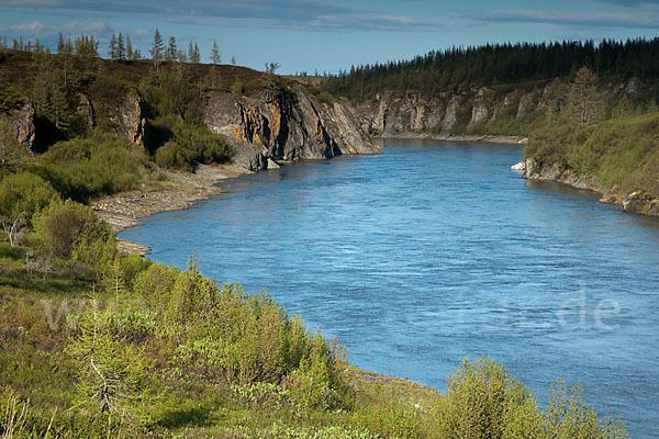 Russland, samojeden-halbinsel, sibirien, yamal peninsula, russia