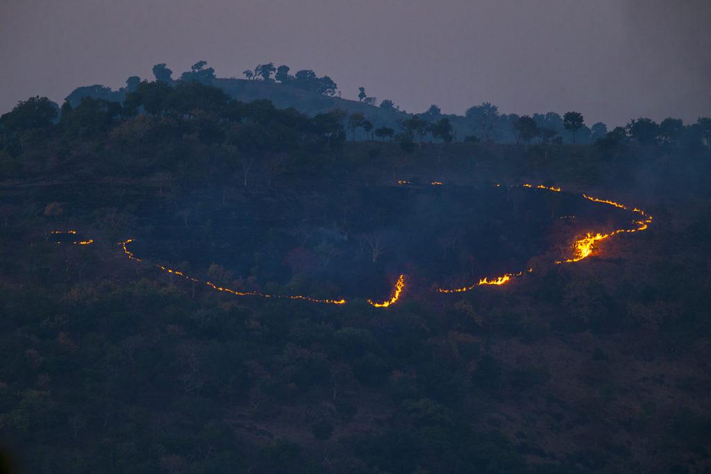 Aethiopien; Alatish Nationalpark; feuer; landscape; landschaft; pröhl; reisen; travels; waldzerstörung; Äthiopien