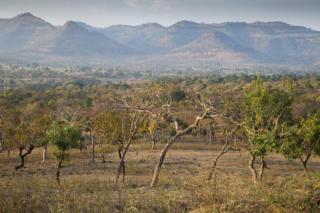 Aethiopien; Alatish Nationalpark; Amhara; landscape; landschaft; pröhl; reisen; travels; trockenwald; Äthiopien